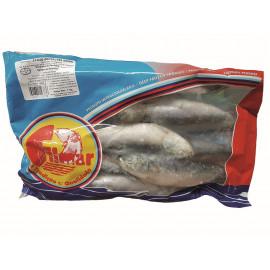 Sardine Peniche